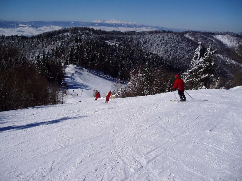 Дриеница (Drienica)